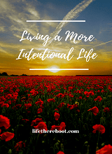 Living a More Intentional Life eBook