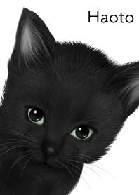 はおと用可愛い黒猫子猫