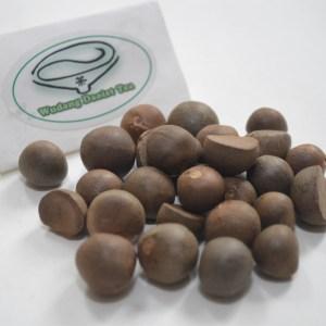 Tea- Seed/ Plant