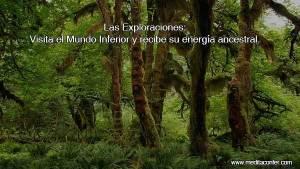 visita-el-mundo-inferior-con-las-exploraciones-meditaconfer