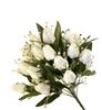 NIN 42626 BUSH TULIPANO X18 6/12