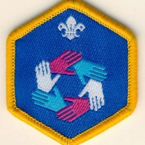 106201-Cub-Teamwork-Challenge-Award-Badge-1