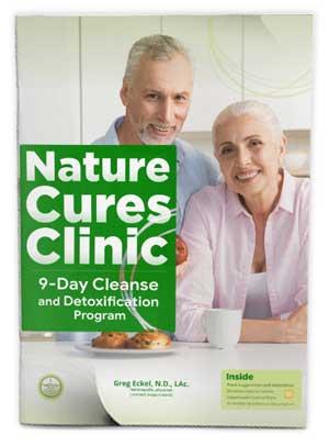 detox guidebook cover
