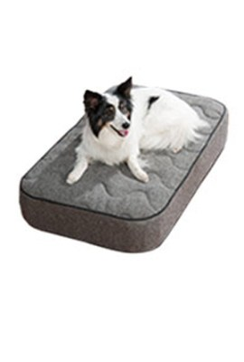 Dog Beds and Furniture