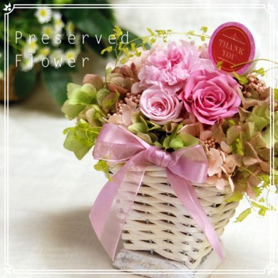 Bluelace Jewelry   Rakuten Global Market  Gift flowers Carnation     Gift flowers Carnation presents preserved pink carnations and roses sweet  pink basket flower presents Interior festive goods