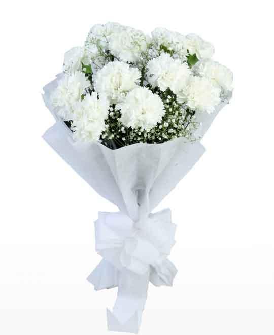 RootsandLeisure_CarnationsBouquet