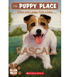 Image result for puppy place rascal