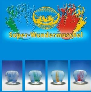 Super-Wundermuschel mit echte | Aurich
