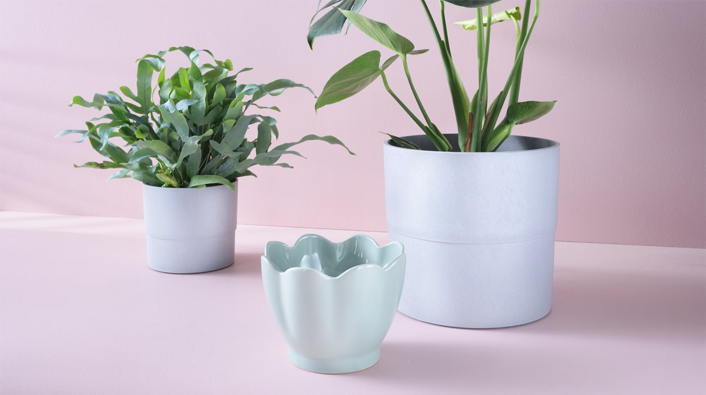 Plants Plant Pots Stands Growing Accessories Ikea