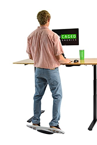 Wobble Board balance stability trainer