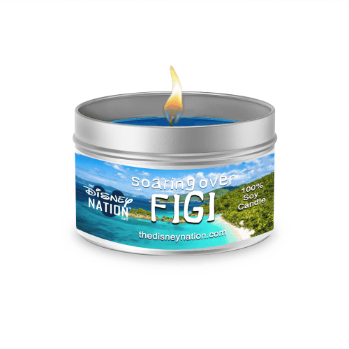 Soarin' Over Figi™ Fragrance Candle Large