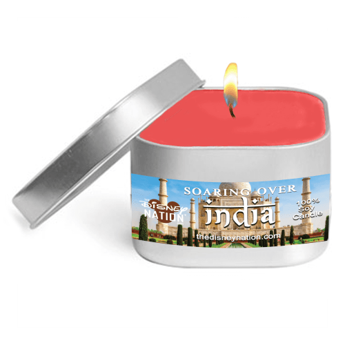 Soarin' Over India™ Fragrance Candle Small