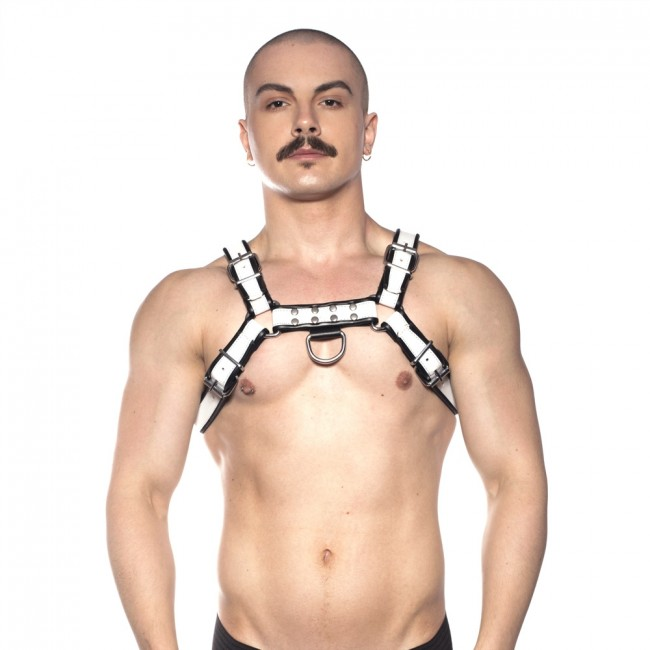 Prowler RED Bull Harness Black/White