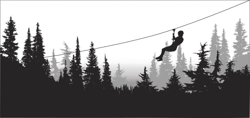 Forest Zip Line Adventure