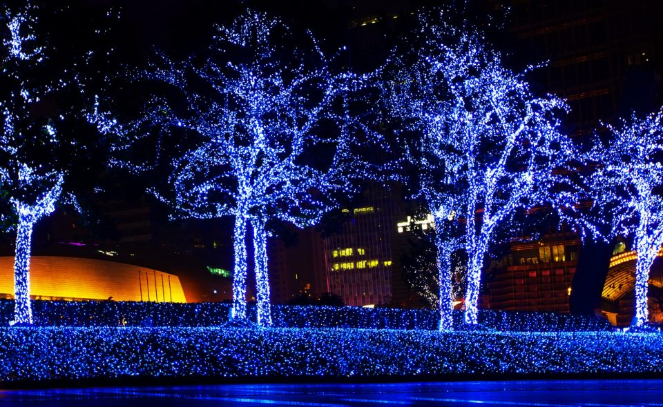 Christmas in Lights