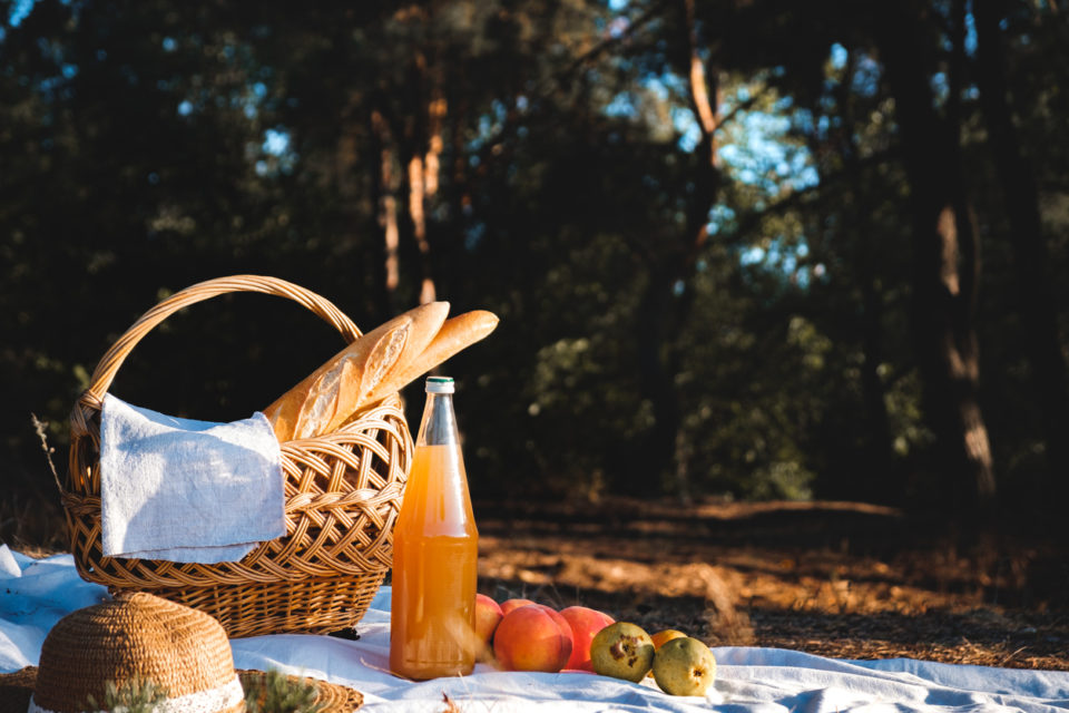 Picnic outdoors on a forest meadow.