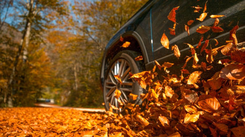 vehicle driving down the road around fall leaves