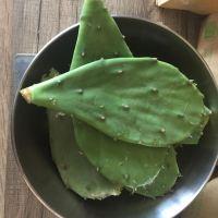 Raquettes d'opuntia ( 500 grs)