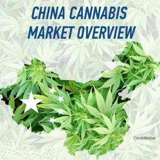 china cannabis market overview