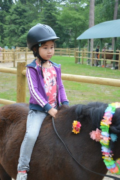 Pony vakantie