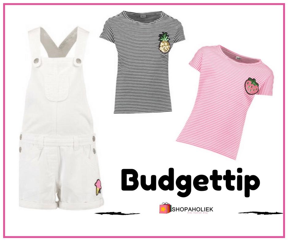 Budgettip