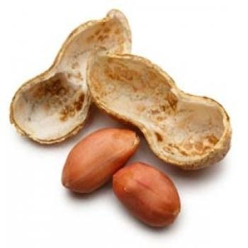 Fruits Groundnut-Moongphali
