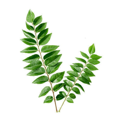 Fresh Vegetables Curry Leaves