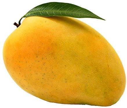 Fruits Mango- Safeda