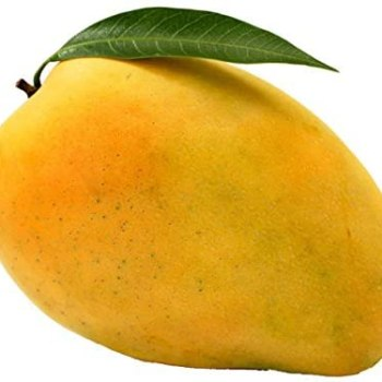 Fruits Mango- Safeda