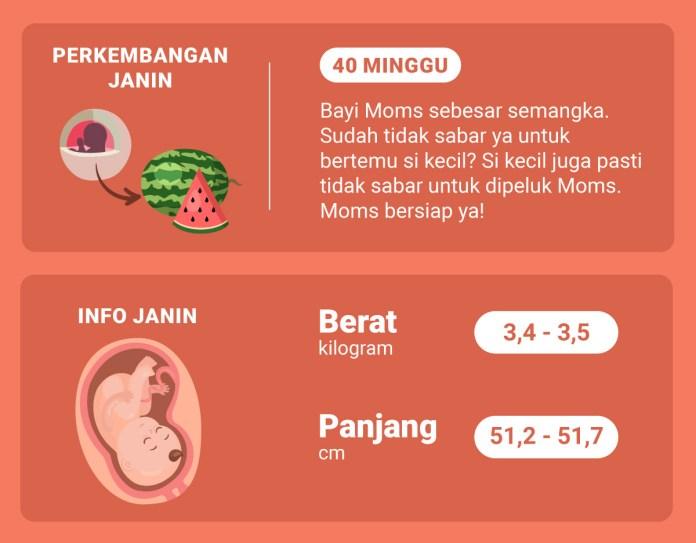Hamil 40 Minggu