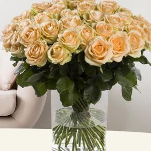 50 zalmkleurige rozen - Avalanche Peach | Rozen online bestellen & versturen | Surprose.nl