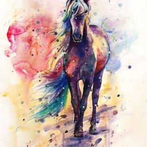 Happy Painter® Diamond Painting volwassenen - Paard met kleuren - 30x40cm