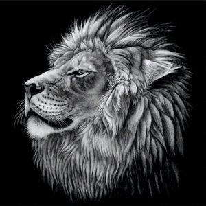 Leeuw (zwart-wit) - Diamond Painting 30x30 cm (volledige bedekking) inclusief premium tools - TMT Diamond ®