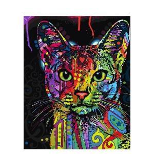 Schilderen op Nummer | Opgewekte Kat 40x50cm - Op Lijst Gemonteerd