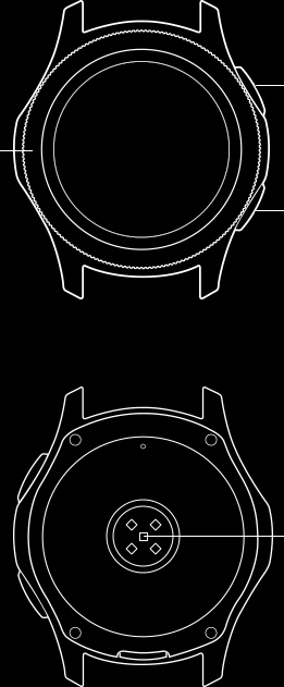 Line drawing of front and back view of Galaxy Watch body section.