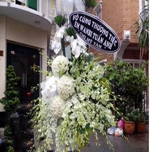 hoa chia buồn hcb 25