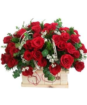hoa sinh nhật đẹp nhất