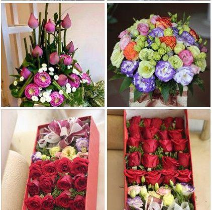 cửa hàng hoa tươi quận 6 tphcm