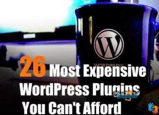 expensive wordpress plugins