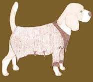 Browncoat Dog Training