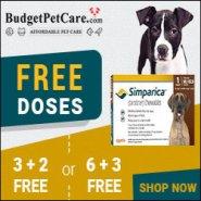Best Price Guaranteed Budget Pet Care