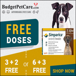 Best Price Guaranteed Budget Pet Care