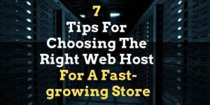 Read more about the article 7 Tips For Choosing The Right Web Host For A Fast-growing Store