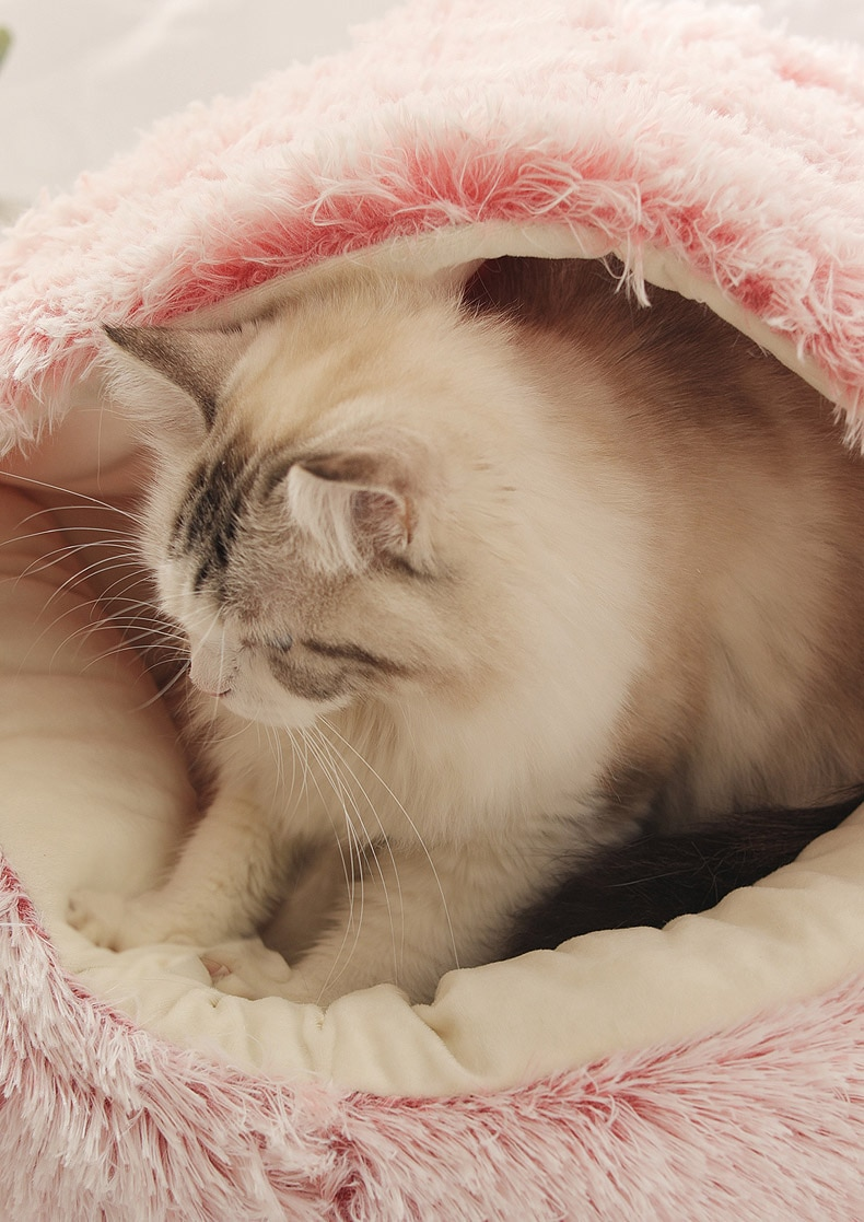 Cats Round Plush Bed