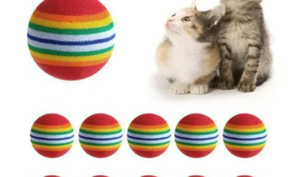 Cat Supplies 3.5cm Cat Ball Toys for Puppy Cat Interactive Playing Chew Toy Rattle Scratch EVA Ball for Pet Cat Training 1pc