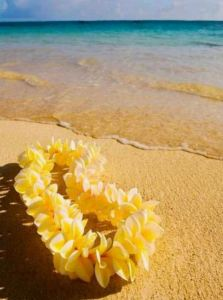 Plumeria Lei on Shoreline. Photo found on Pinterest via Rhoda Toshimitsu.