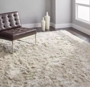 Walking on Clouds, the Safavieh Silken Glam Paris Rug in 8x10 size is only 300 Dollars at Overstock.Com
