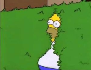 Nobody likes getting caught going in the bushes...Homer Simpson from the genius animated series, The Simpsons.