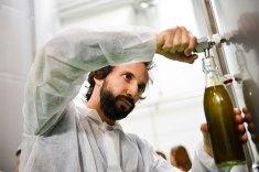 oliveira-da-serra-mostra-como-se-faz-azeite-na-herdade-do-marmelo_3