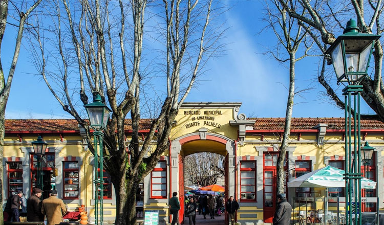 Mercado de verão em Vila do Conde reúne moda, street food, workshops e música